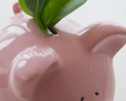 Fresh leaves in piggy bank --- Image by © Jamie Grill/Tetra Images/Corbis