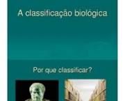 a-classificacao-biologica-moderna-3