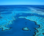 The Great Barrier Reef, the world's largest coral reef, lies in the Coral Sea off northeastern Australia. Near Queensland, Australia