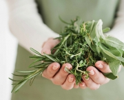 Fill your garden with easy-to-grow medicinal herbs such as sage, rosemary and thyme.
