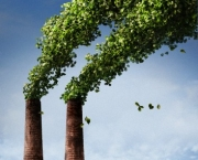 Smoke stacks producing green leaves instead of smoke --- Image by © C.J. Burton/Corbis