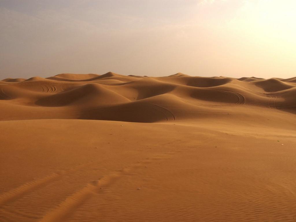 [Imagem: deserto-caracteristicas-3.jpg]