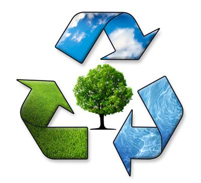 Resultado de imagem para meio ambiente