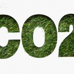 CO2 sign made of grass